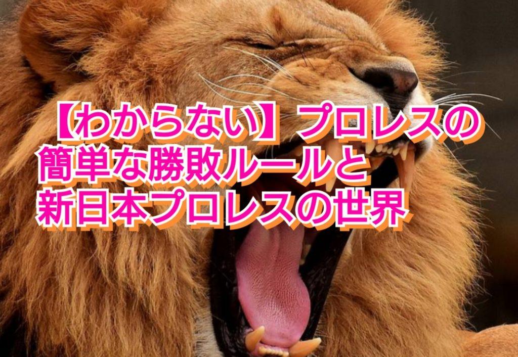プロレスの簡単な勝敗ルールと新日本プロレスの世界