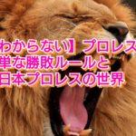 【新日本プロレス】プロレスの簡単な勝敗ルールと新日本プロレスの世界