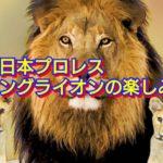 新日本プロレス  ヤングライオンの楽しみ方【違う視点で】