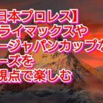 【新日本プロレス】G1クライマックスやニュージャパンカップなどのシリーズを別の視点の予想で楽しむ