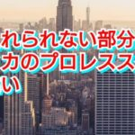 【新日本プロレス】受け入れられない部分も?アメリカのプロレススタイルとの違い